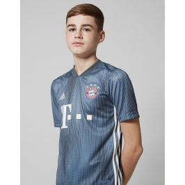 Opiniones adidas FC Bayern Munich 2018/19 Third Shirt Junior, Gris